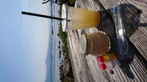 糸島 プリン